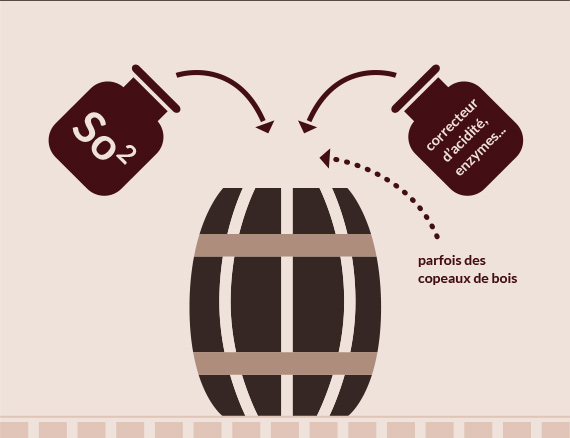Elevage du vin conventionnel-Vinibee