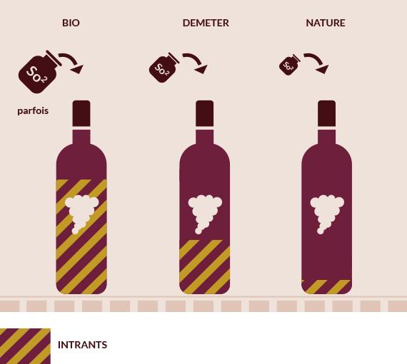Mise en bouteille du vin-Vinibee