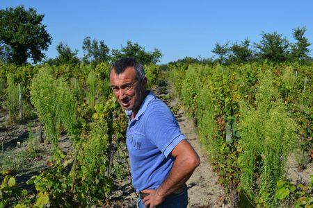 Domaine des Jumeaux-Jean Marc Tard-Vinibee