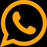 Contactez Vinibee sur What's App