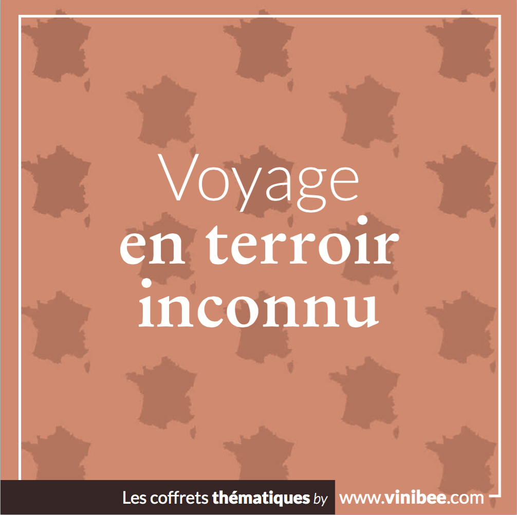 coffret vins Voyage en Terroir Inconnu - Vinibee