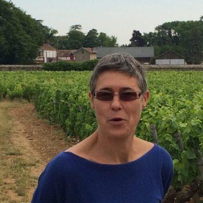Bourgogne-Domaine Jane et Sylvain-Vinibee