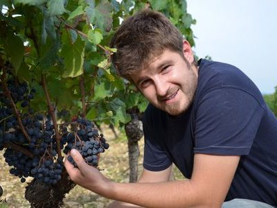 Fabien Jouves, vigneron - Vinibee