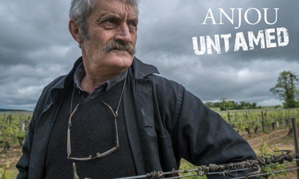 Jean-Yves Bardin - Anjou Untamed - Vinibee