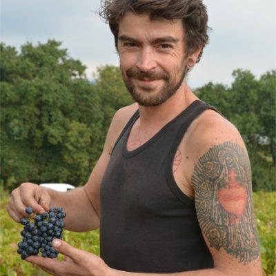 Partez à la rencontre de Sylvère Trichard, vigneron naturel en Beaujolais - portrait vigneron - Vinibee