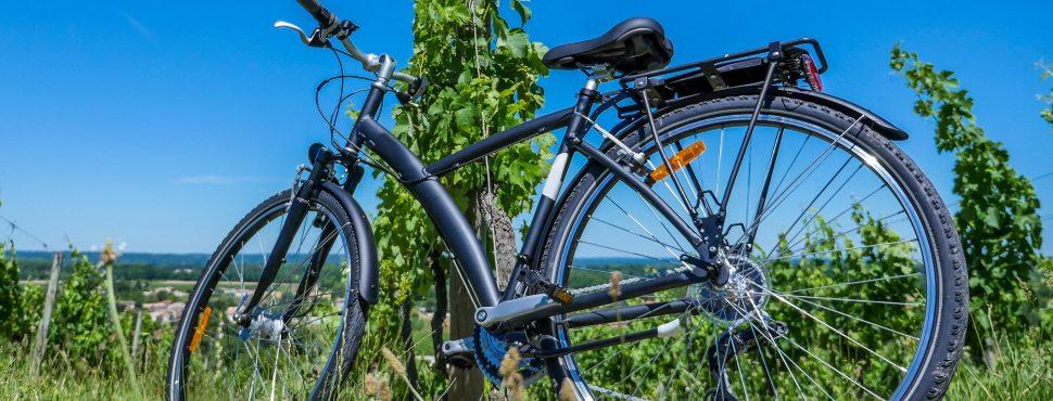 le Tour de France des Vins Naturels - Vinibee