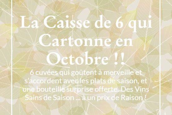 La Caisse de 6 qui Cartonne en Octobre - Vinibee