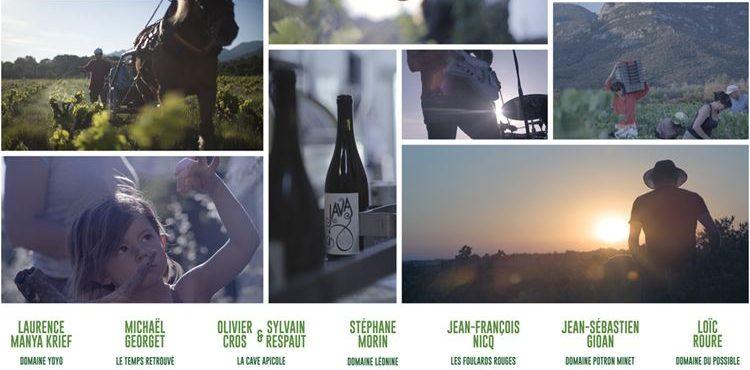 Wine Calling - affiche - Vinibee