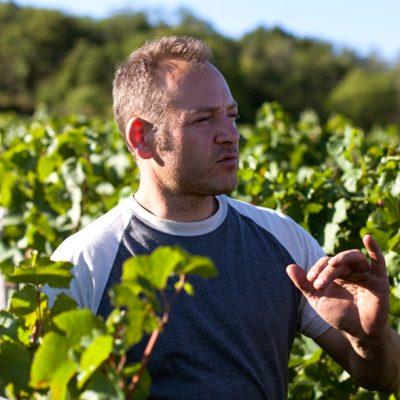 Julien Guillot - Domaine des Vignes du Maynes - Vinibee