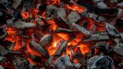 Quel vin rouge boire avec un barbecue - 6 Rouges de Braise - Vinibee