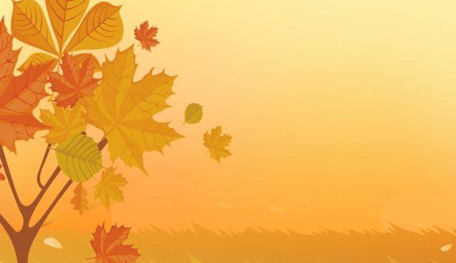 La Caisse de 6 qui Cartonne en Septembre - vins naturels - Vinibee