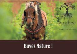 carte cadeau vin vivant - vinibee