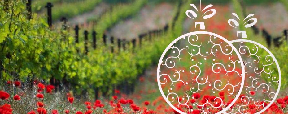 Un Noël au naturel - vins naturels - Vinibee