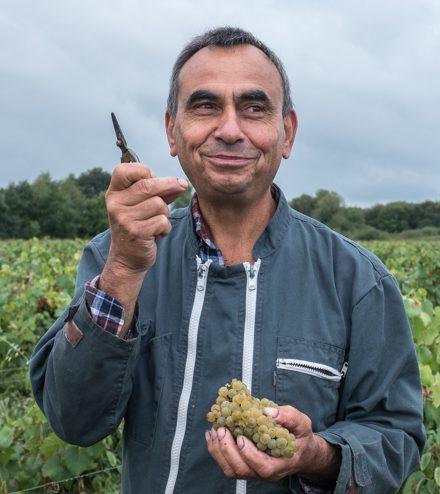Marc Pesnot - Domaine de la Senechaliere - Vinibee