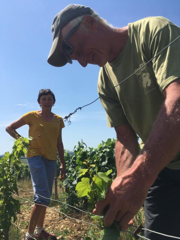Alice et Olivier de Moor - Chablis - vin naturel - vinibee