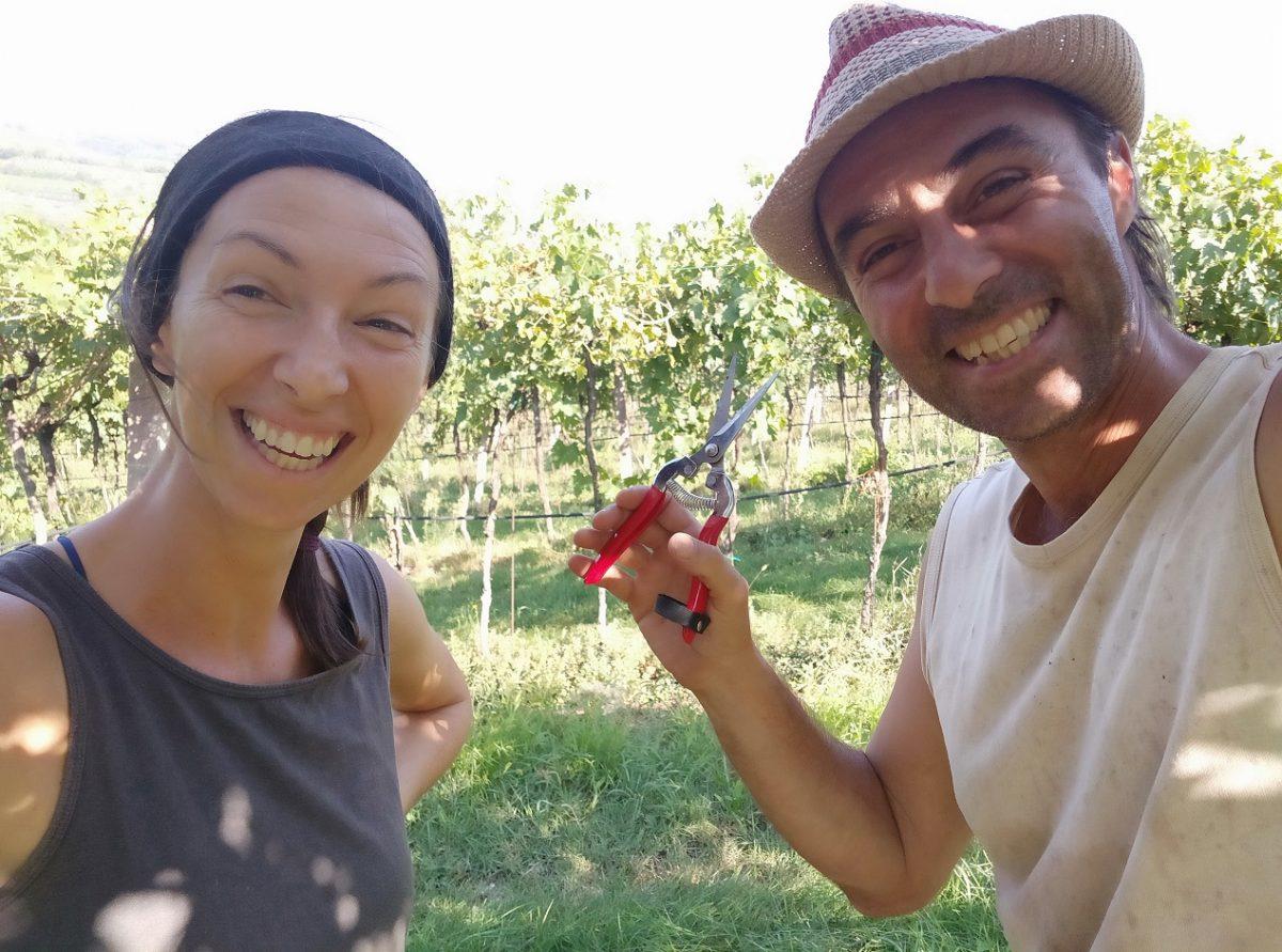 Il Monte Caro - marcolini - valpolicella - vin naturel - vin italien - vinibee