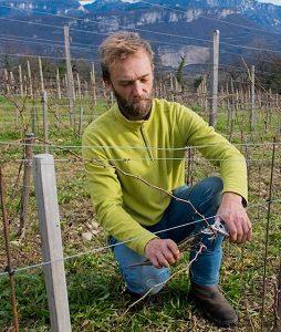 domaine des Alpins - Sébastien Benard - vin naturel - isere - Vinibee